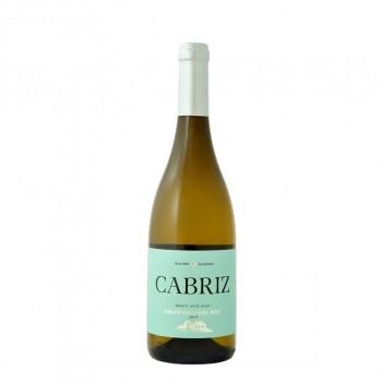 Vinho Branco Cabriz Sauvignon - Dão 2019