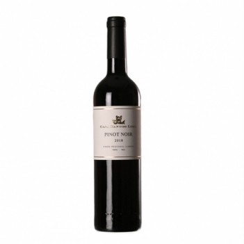 Vinho Tinto Casa de Saima Pinot Noir - Bairrada 2019